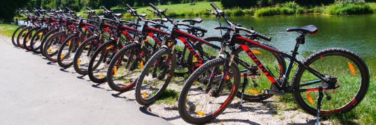 out & back-Fahrräder